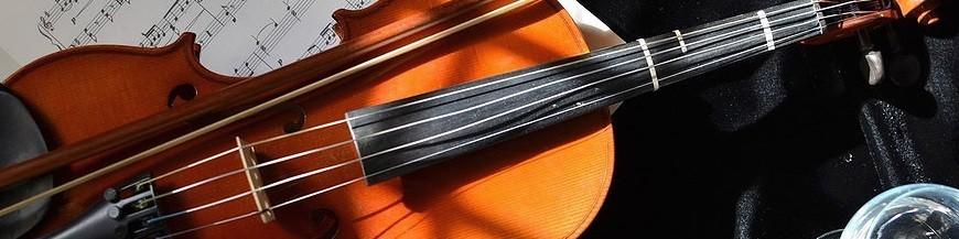 Instrumentos Arco